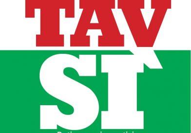 TAVSI, il libro